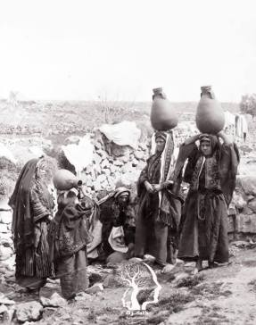 Peasants from Ramallah who fill water tractor-1900 m